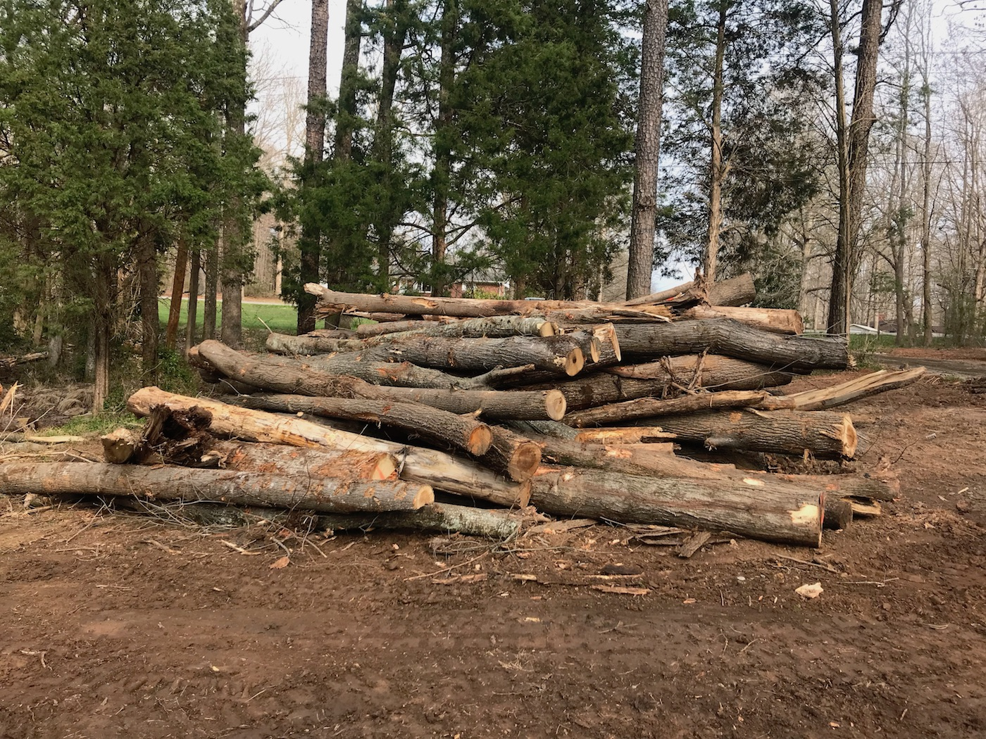 Lot Clearing RCI Construction Group NC